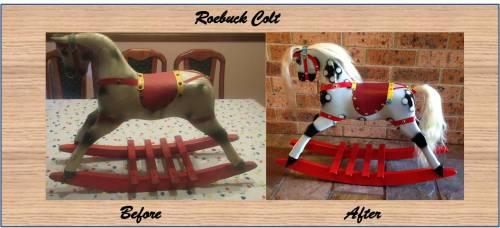 roebuck-colt