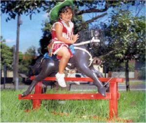 Lindsay's Deluxe Horse